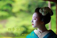 """四季京艶 """"艶麗万化 六"""" --Kyoto Geisha Maiko-- - 四季京艶"""