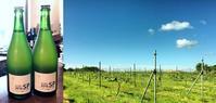 オクルスカイ村山智一とワインを楽しむ会@金沢 - WineShop FUJIMARU