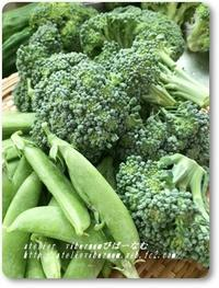 野菜のめぐみ - 十色記