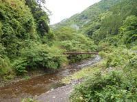 6月に、十津川の山で草刈りしてきました。 - 棠芽梨婀 溜