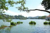 只今、スリランカを旅行中(その6)(世界遺産の聖地キャンディと、トゥクトゥク体験) - 旅プラスの日記