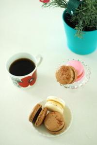 6月のいろいろ☆ - moko's cafe