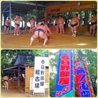 勝川・犬山で朝稽古見学   2017 - ピースケさんのお留守ばん