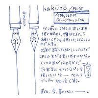 万年筆kakunoさん。 - missa*diary