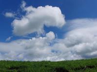 暑かった!今年お初の合宿だったのぢゃ@中〜南九州・The Final - 呑むさん蝶日記
