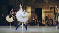 パリ・オペラ座 ~夢を継ぐ者たち~ Backstage - 殿様の試写室