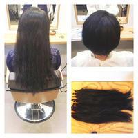 ヘアドネーションにご協力頂いたF様! - 東京都荒川区にある尾久駅前の美容室 WEST HAIR DESIGNのブログ