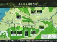 奥入瀬渓流 - ケセラセラ2♪