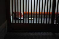 #dp2Q #金沢 夜の主計町茶屋街 - 関西ウォーカー自遊人 Trial