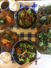 夏野菜いろんな味付けで変化をつけて・・・7/6 - vegechi