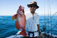 2017,07/03.05.06 鯛ラバ - 鯛ラバ遊漁船  Miyazaki Offshore Boat Game Marine Frog