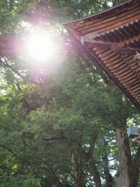 梅雨の晴れ間! - 浦佐地域づくり協議会のブログ