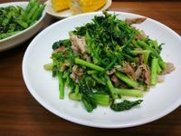 実家から届いた野菜で - お弁当と春の空