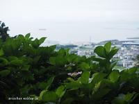 瀬戸内海と紫陽花~♫ - アリスのトリップ