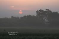 7月7日、霧の朝。 - ekkoの --- four seasons --- 北海道