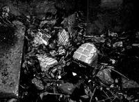 ある廃墟の風景 - 勿忘草・・時の記録