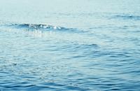 海が見たくて② - Sorekara・・・