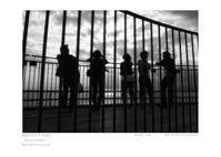 Portfolio 048 - Shou's portfolio