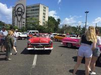 不思議の国 キューバ - パナマップル(ぶるぶるハンブルク)