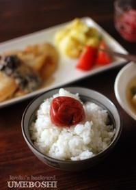 梅干しのある食卓。カレイのソテー。 - Kyoko's Backyard ~アメリカで田舎暮らし~