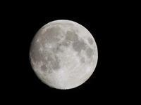七夕の月♪ - 写真撮り隊の今日の一枚2