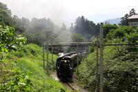 煙かすむ季節 - 秩父鉄道 - - ねこの撮った汽車