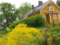 9/26 10:30−12:30 ハーブセミナー「フィンランドの植物療法 〜 ヘルシンキのハーバリスト、ヘンリエッタさんを訪ねて 〜」@トトラボ(横浜・日吉) - 英国メディカルハーバリスト