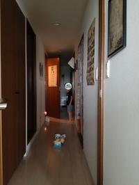 壁紙リフォーム!【リビング、トイレ編】 - *peppy days*