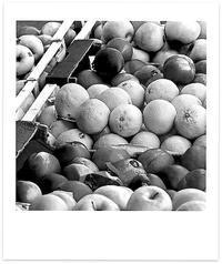 赤茄子月 寫誌 ⑦ カオスなフルーツたち - le fotografie di digit@l