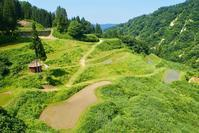 ひと月遅れ - 松之山の四季2