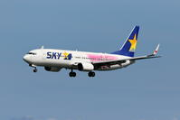 SKY タカガールジェット - 南の島の飛行機日記