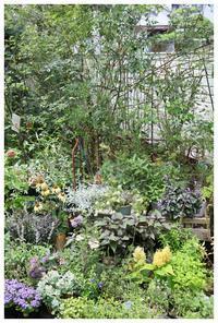 natuに新たな白い板塀 - natu     * 素敵なナチュラルガーデンから~*     福岡でガーデンデザイン、庭造り、外構工事をしてます
