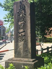 氷川神社【RAA さん】 - あしずり城 本丸