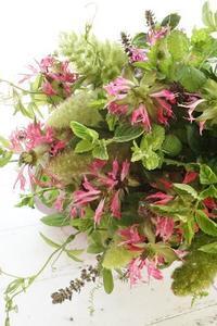 かほりのブーケロン♪ - お花に囲まれて