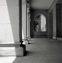 light & shadow - 心のカメラ / more tomorrow than today ...