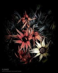 FLOWER 3 - Illusion on the Borderline  II @へなちょこ魔術師