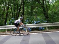 2017 六甲ライジング - My Cycling Diary