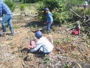 第1回植樹共同作業 -