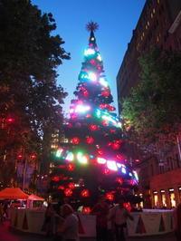 シドニーで夜のお散歩②〜クリスマスシーズンのCBD〜 - 南米・中東・ちょこっとヨーロッパのアイスクリーム旅
