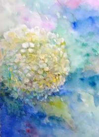 紫陽花 - まり子の水彩画