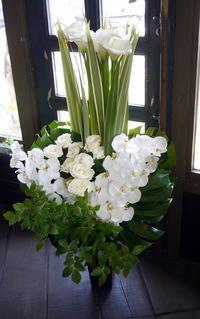 葡萄酒とフレンチのお店の開店に①。「白~グリーンで」。南4西5の2階にお届け。2017/07/08。 - 札幌 花屋 meLL flowers