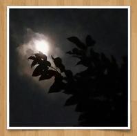 満月を捕まえたい - 歌い手菅野千恵のaround me