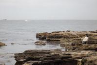 海のある風景 - 光の贈りもの