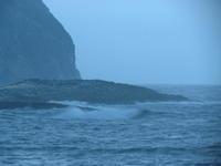 大時化です⤵ - Iターンで漁・猟師(直売有)の主人と離島暮らし
