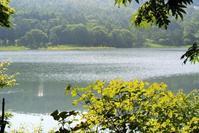 10か月ぶりの女神湖 - ホンマ!気楽おっさんの蓼科偶感