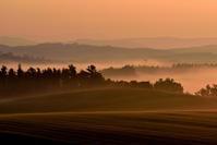 朝霧の丘 - 北国の四季