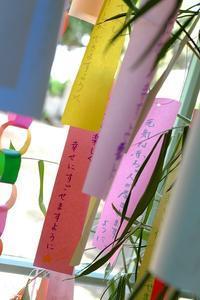 梅雨の横浜 その2 - 味わふ瞬間 (あじわうとき)