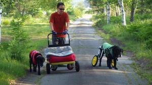 犬用台車そして犬用車椅子 -