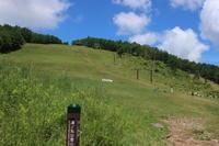 湯の丸山 池の平湿原 訪問記(1) (撮影日:2017/7/6) - toshiさんの気まぐれフォトブログ