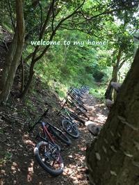 大人の夏休み◆マウンテンバイクで山を駆け降りて、青いお魚に囲まれた週末 - welcome to my home!